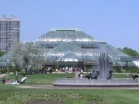 Top Ten: Fun things to do in Lincoln Park