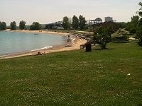 Volunteer for Beach Clean up with Shedd Aquarium