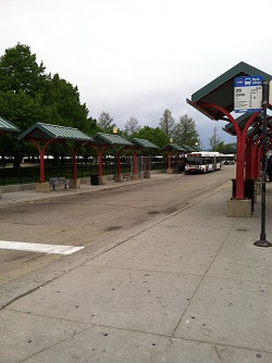 CTA Bus Area Navy Pier