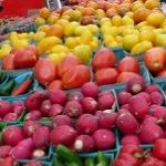 Save money on groceries: try a no-spend month