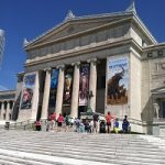 Free Field Museum Market Days