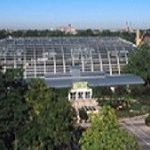 Garfield Park Conservatory: Holiday Flower Show