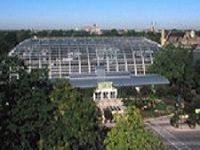 Garfield Park Conservatory: Spring Flower Show