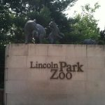 Free family fun:  Zoo Lights at Lincoln Park Zoo