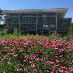 Free lectures and workshops Lurie Garden