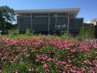 Lurie Garden Free Lectures and Workshops