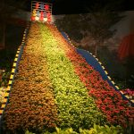 Free Events Macy's Flower Show