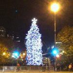 Millennium Park Christmas Tree Lighting Nov 17