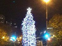 Caroling at Cloud Gate Millennium Park