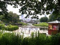Cheap Family Fun at Lincoln Park Zoo