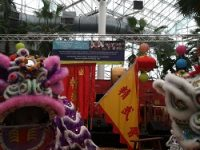 Free Chinese New Year events Chicago