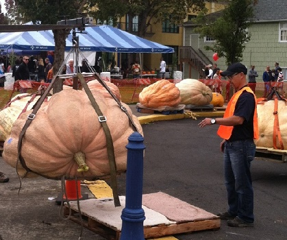 west-coast-giant-pumpkin-regatta-tualatin-or